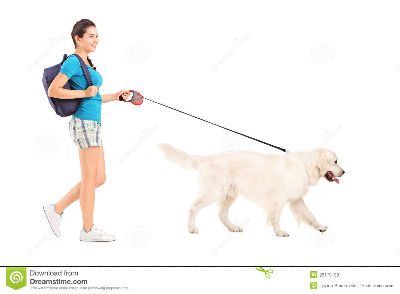 dog walking business plan