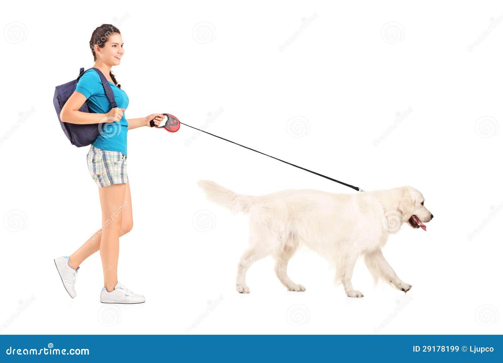 dog walking business plan