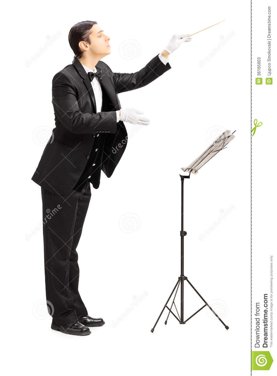 Full length portrait of a male orchestra conductor directing wit