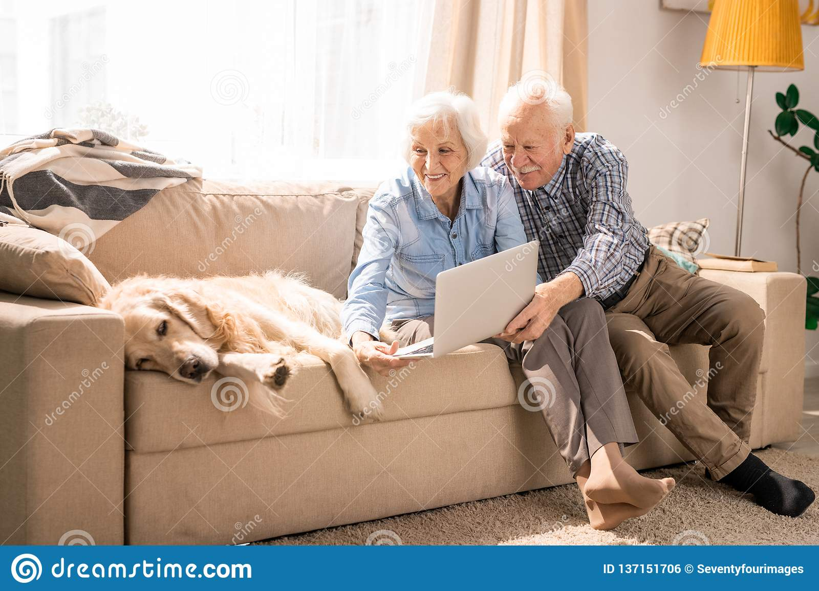 Senior Couple Using Video Chat with Dog