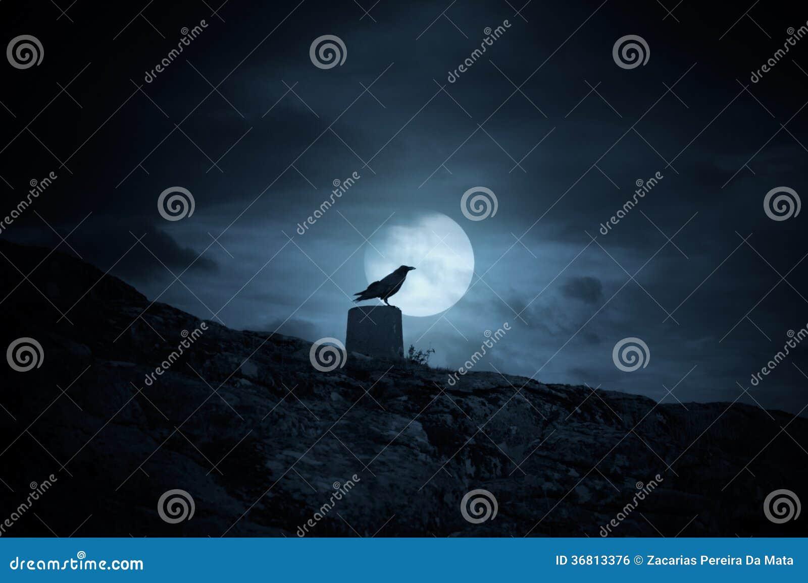 Full moon crow