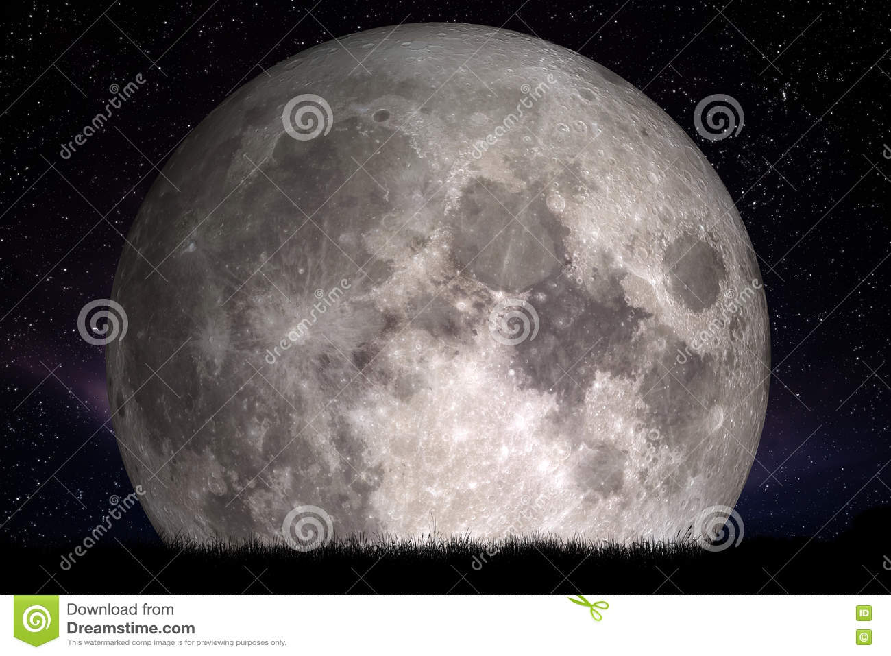 Full moon at night. Grass in the foreground. Perfect for background, copy-space