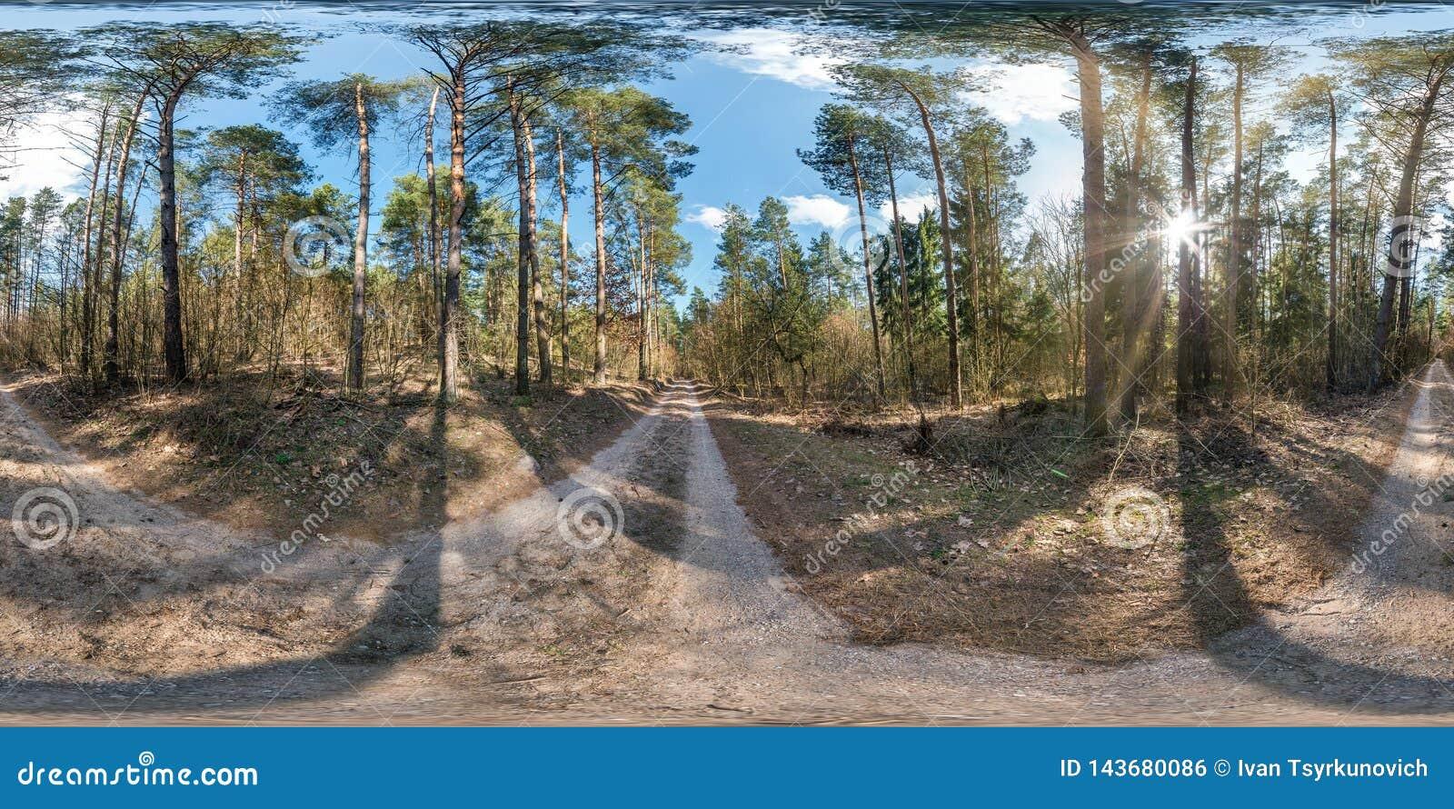 Full sf?risk hdripanorama 360 grader vinkelsikt p? f?r vandringsled- och cykelgr?nd f?r grus den fot- banan i pineryskog i soligt