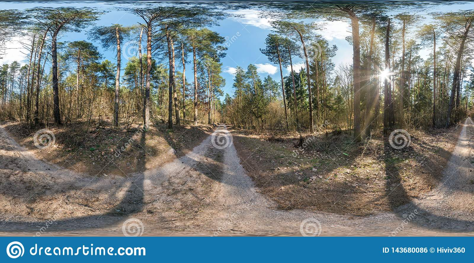 Full spherical hdri panorama 360 degrees angle view on gravel pedestrian footpath and bicycle lane path in pinery forest in sunny