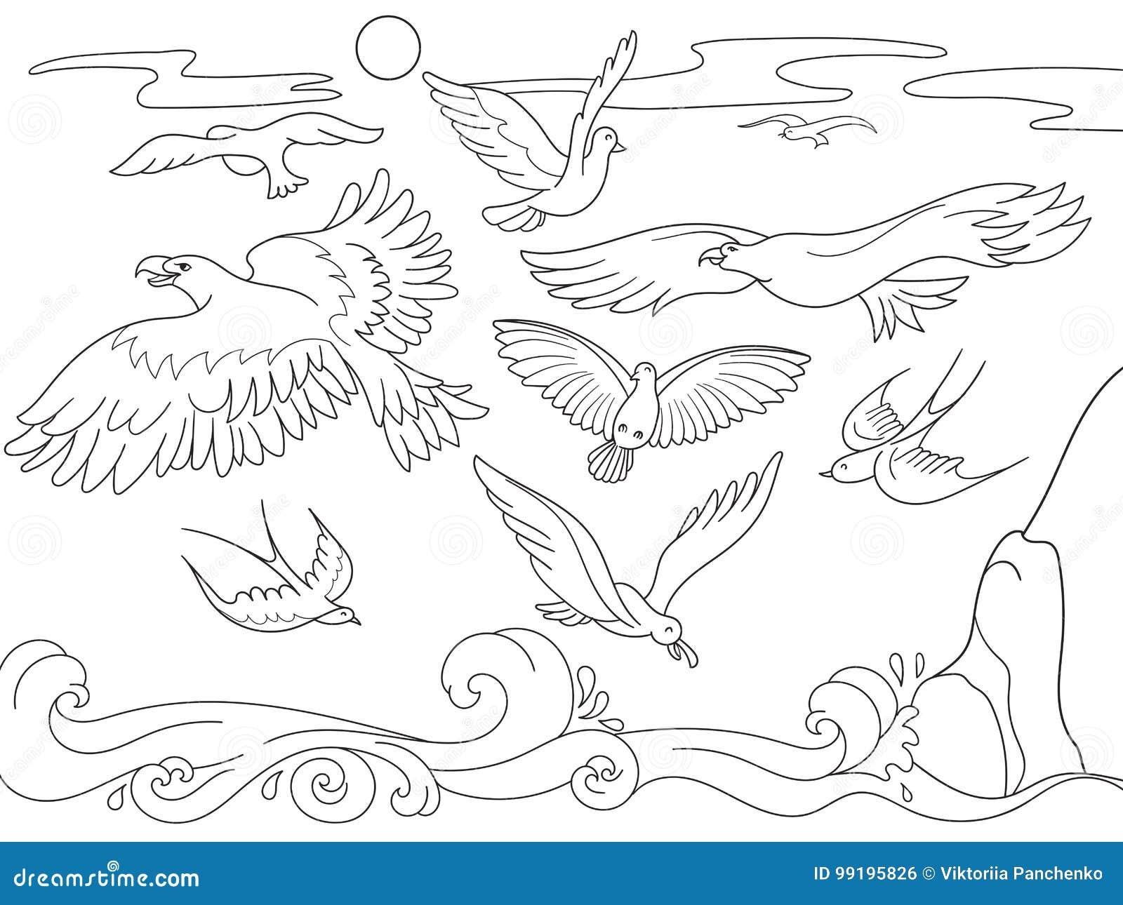Fumetto Del Libro Da Colorare Per I Bambini Sopra Gli Uccelli Di