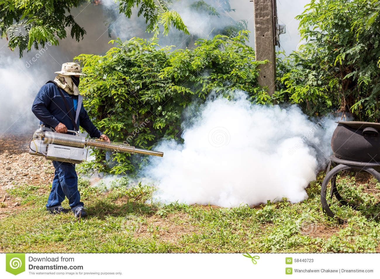 Fumigate Mosquito At Home For Protection Mosquito Stock Image - Image of karachi, exterminator: 58440723 - 웹