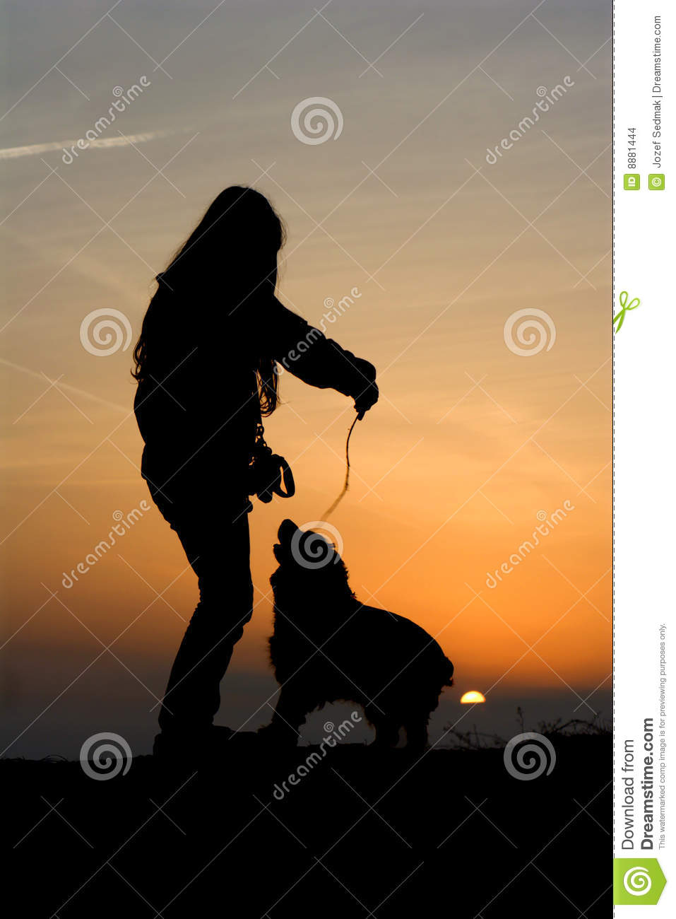 Fun Of Children And Dog In Sunset Stock Images - Image ...