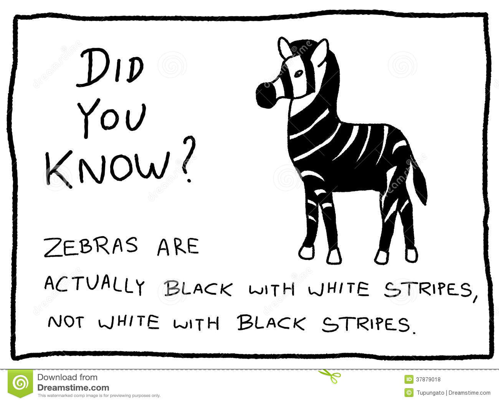 Animal trivia questions