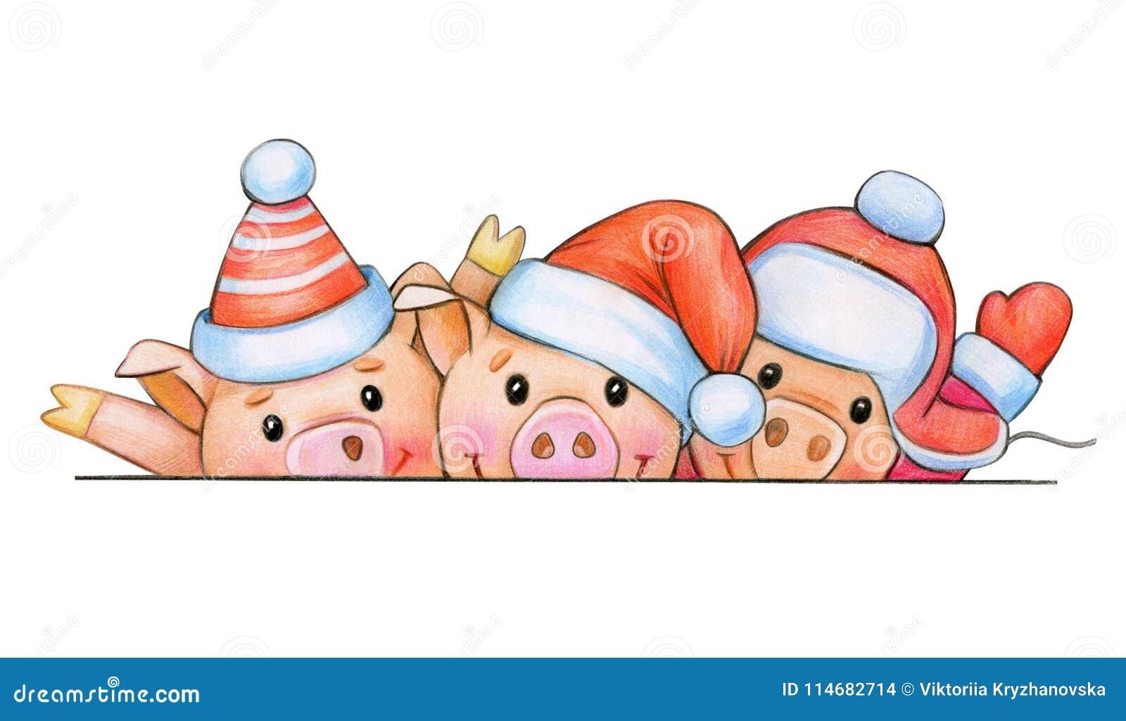 fun pig cartoons in christmas hats stock illustration