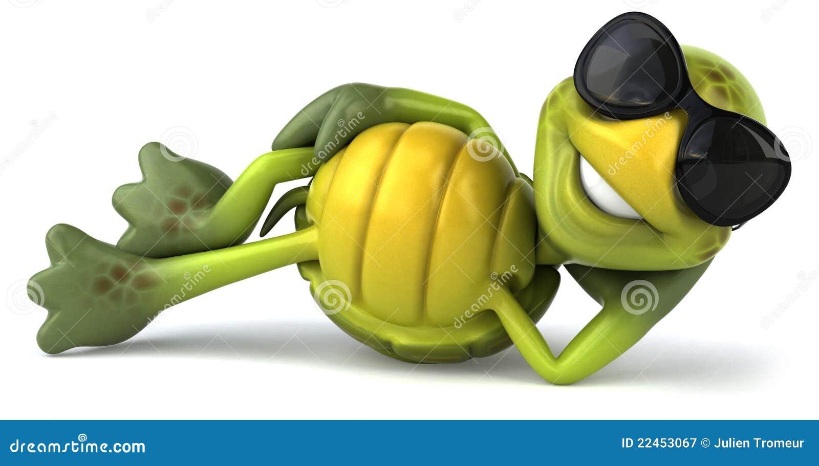 Fun Turtle Royalty Free Stock Photography Image 22453067