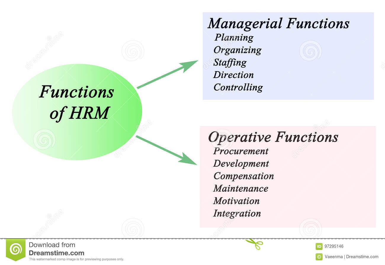 human resource management function Management of human resources research paper starter homework help management of human resources role and name of the human resource management function.