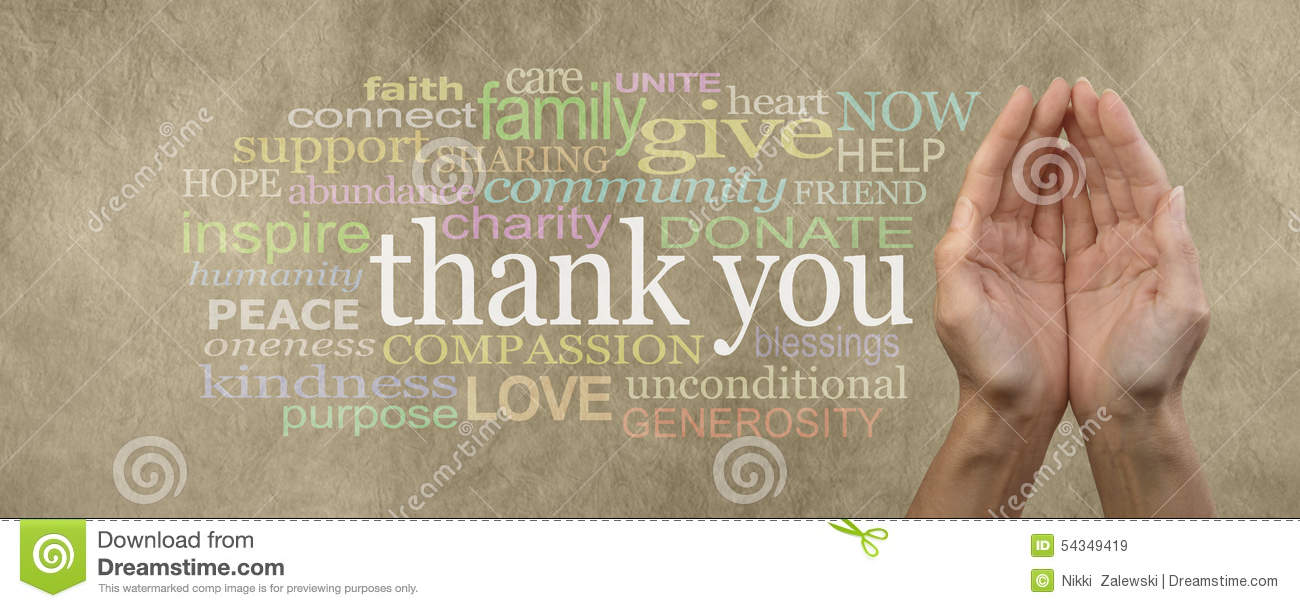 Fund Raising Campaign Website Header saying Thank You