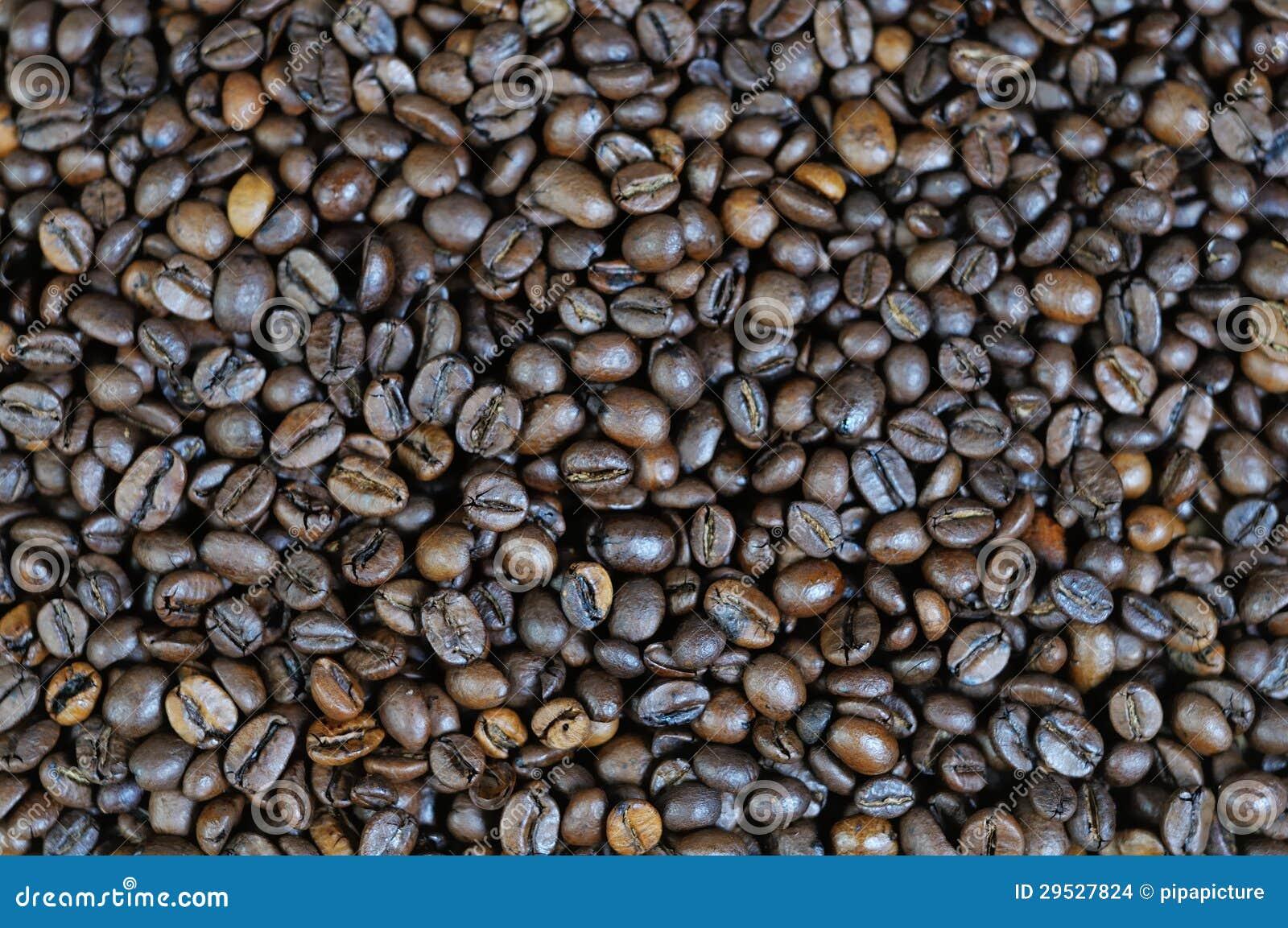 Fundo 3 dos feijões do café