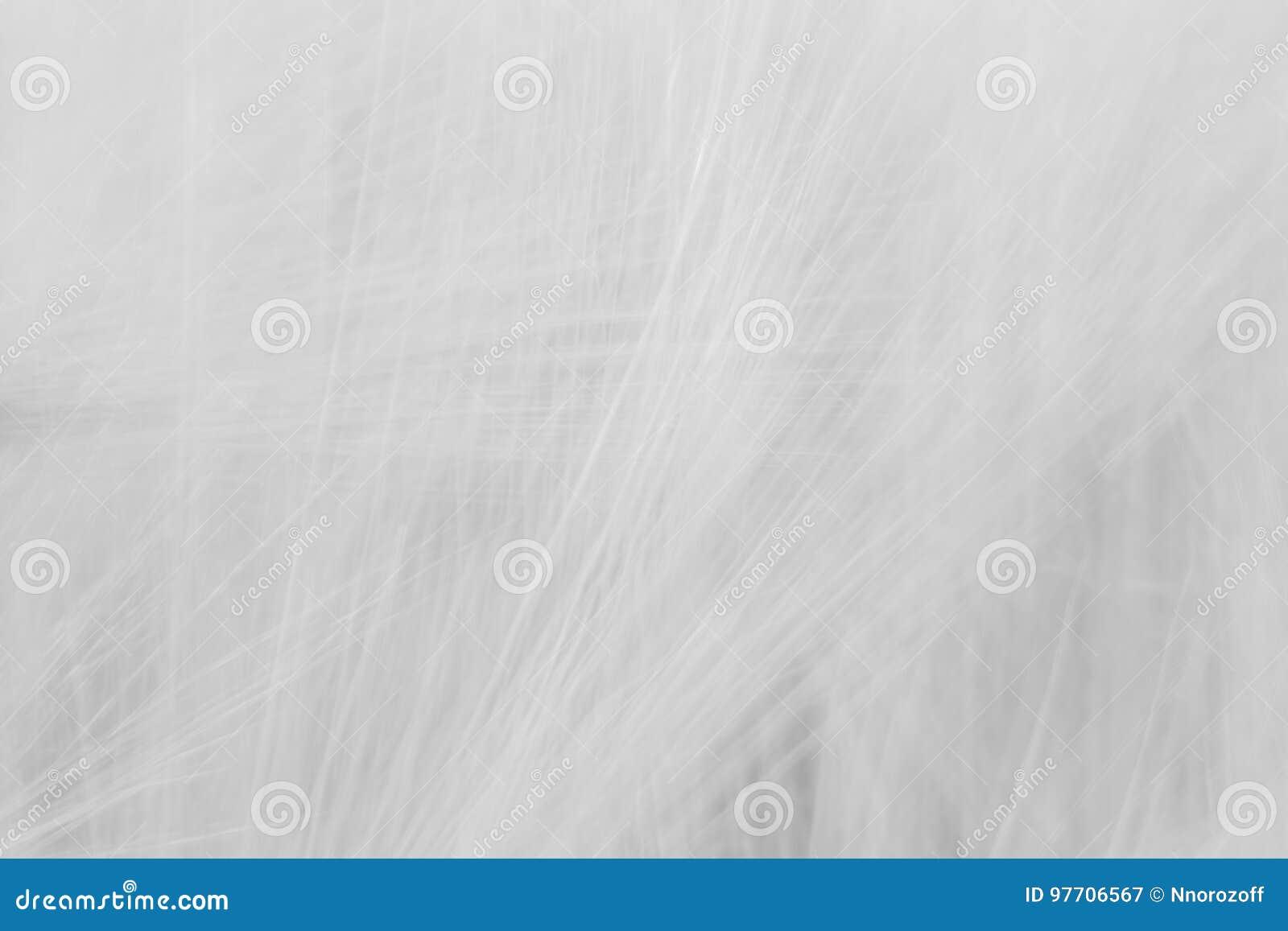 Fundo abstrato cinzento borrado com uma predominância das linhas