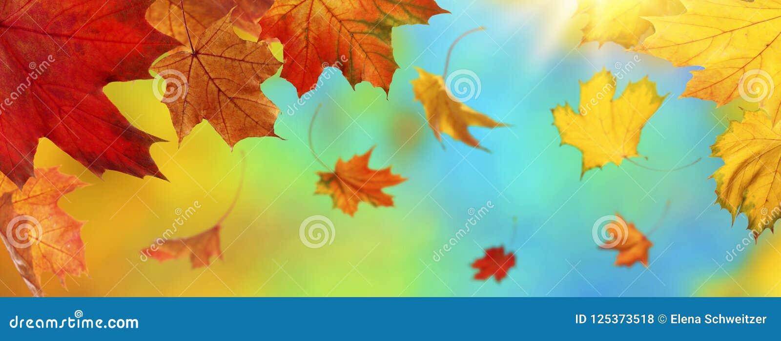 Fundo abstrato do outono