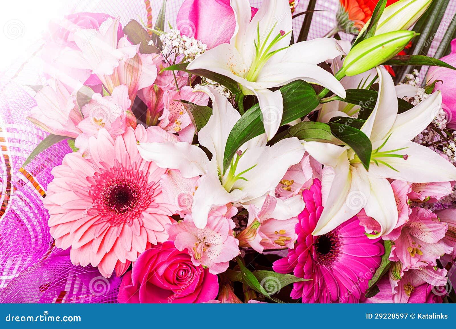 Download Fundo bonito da flor. imagem de stock. Imagem de cedo - 29228597