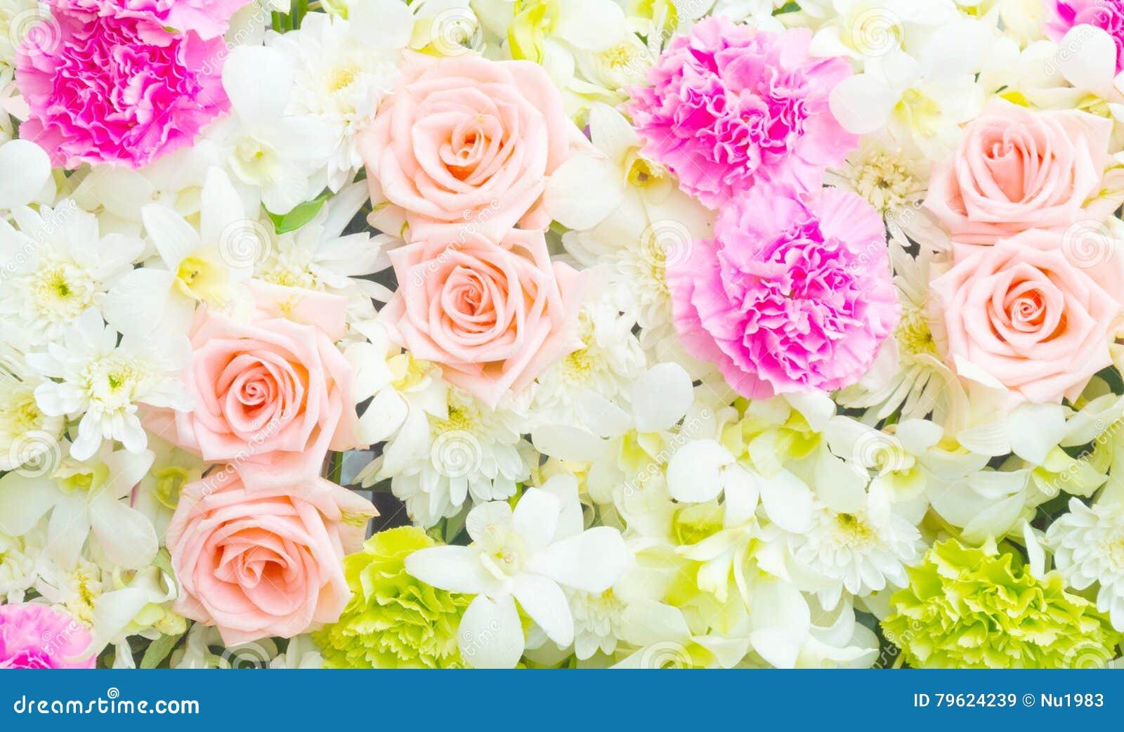 Fundo bonito das flores