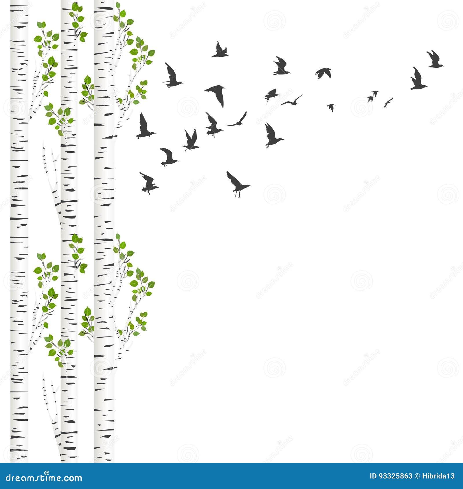 Fundo com árvores e pássaros de vidoeiro