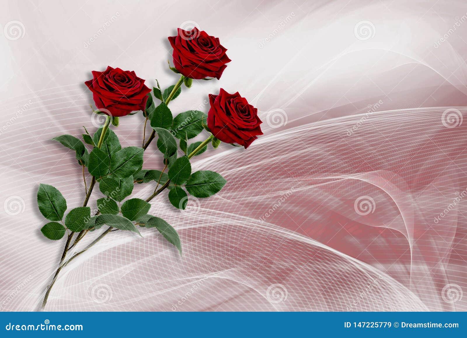 Fundo com as três rosas vermelhas