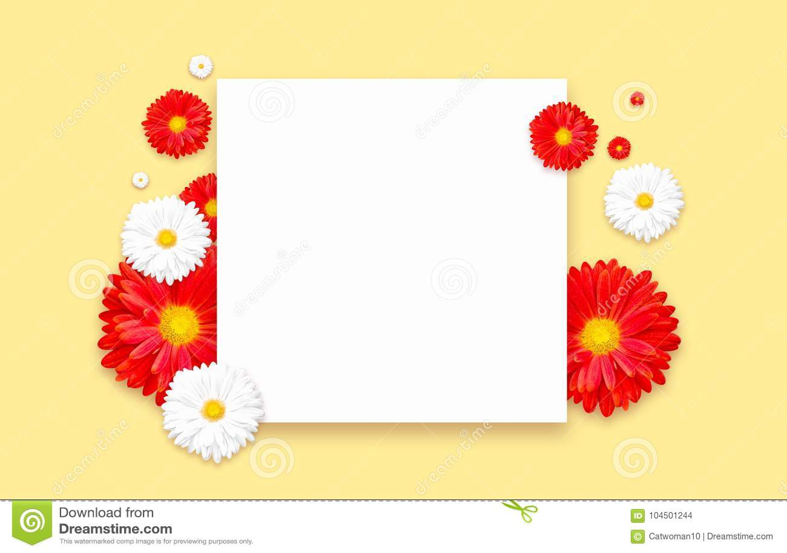 Fundo com a flor colorida bonita Insetos do papel de parede, convite, cartazes, folheto, disconto do comprovante