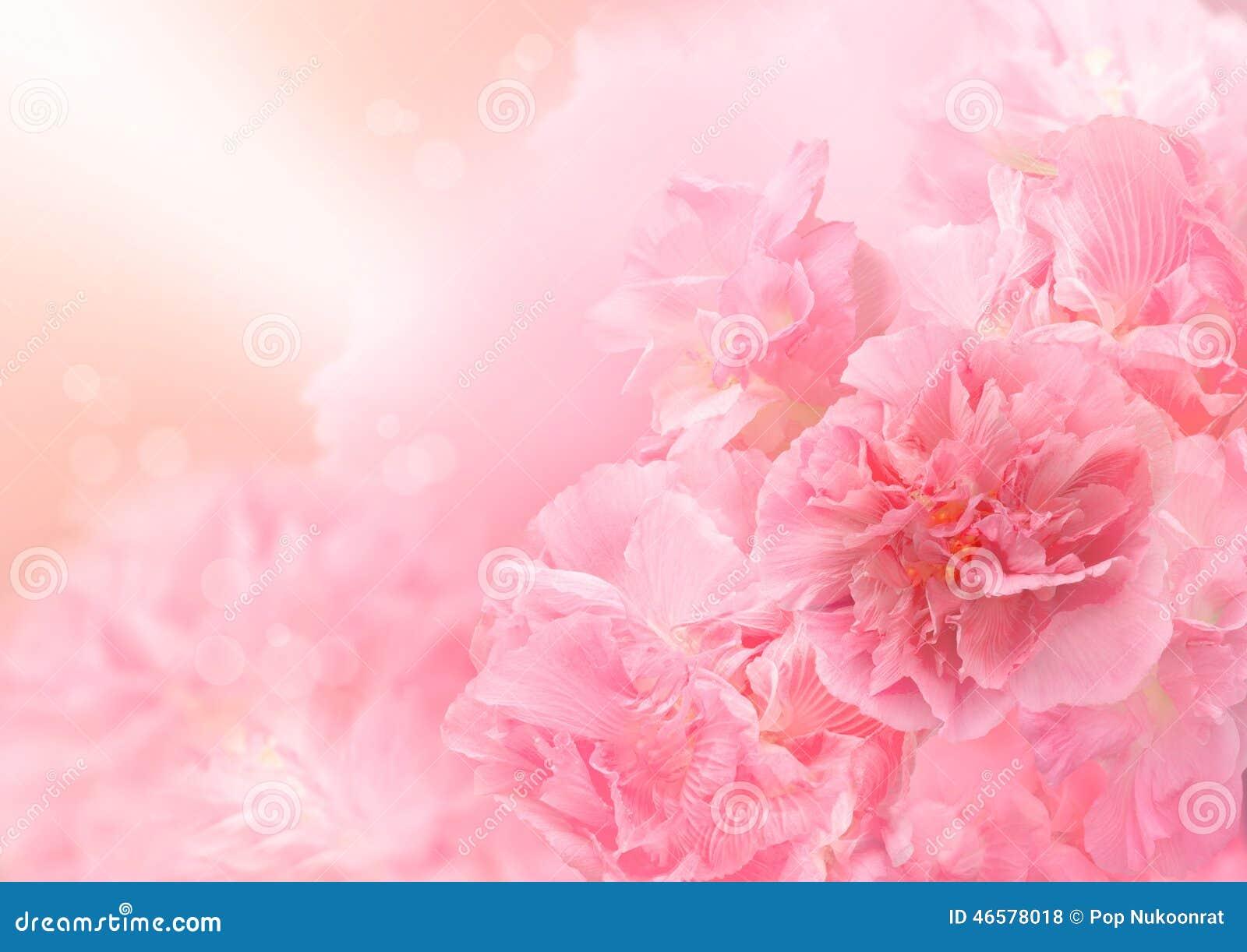 foto flor grande: