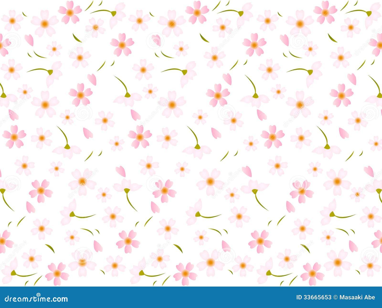 Fundo Cor-de-rosa Das Flores De Cerejeira Da Mola ...