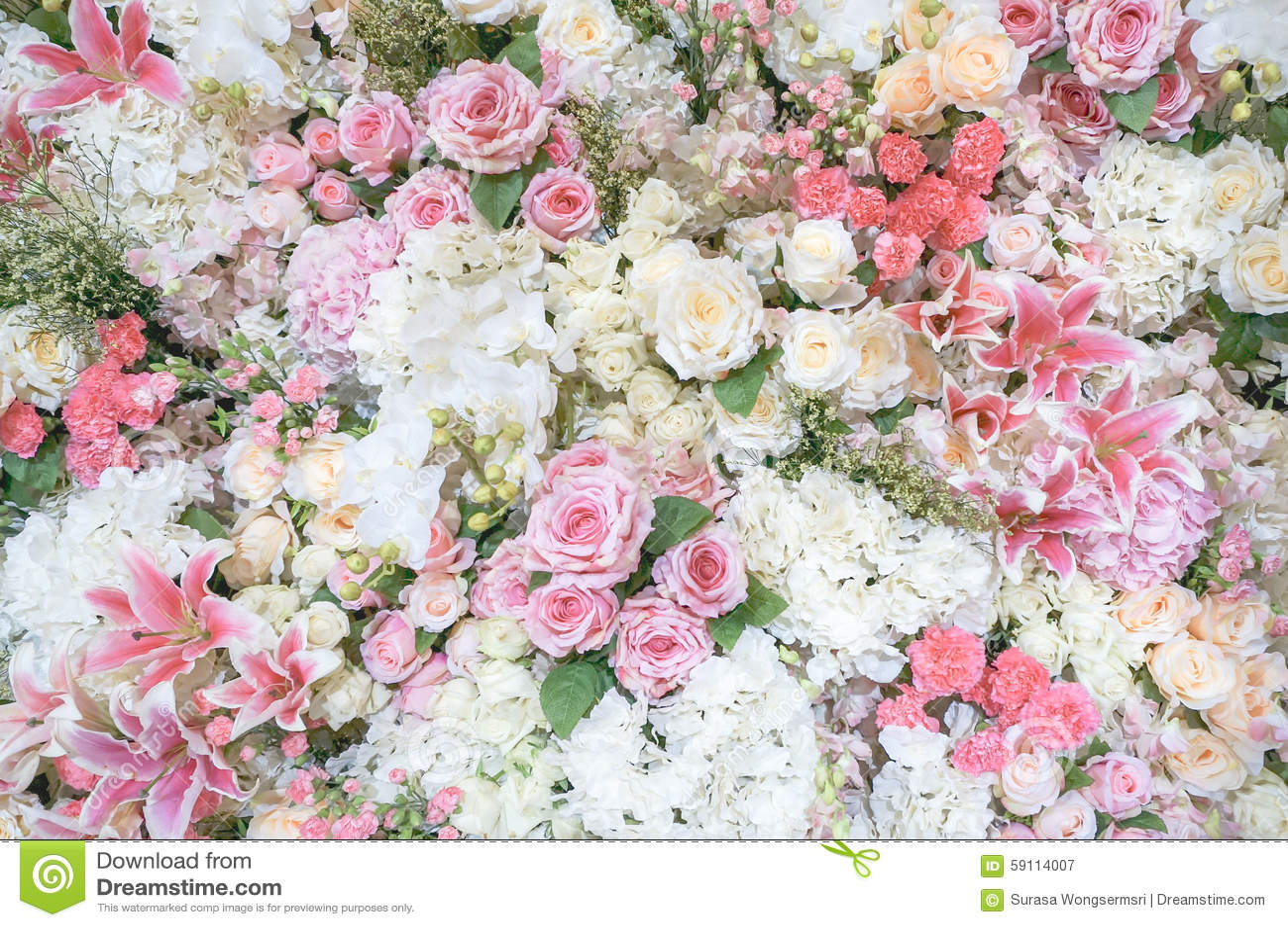 Fundo da flora