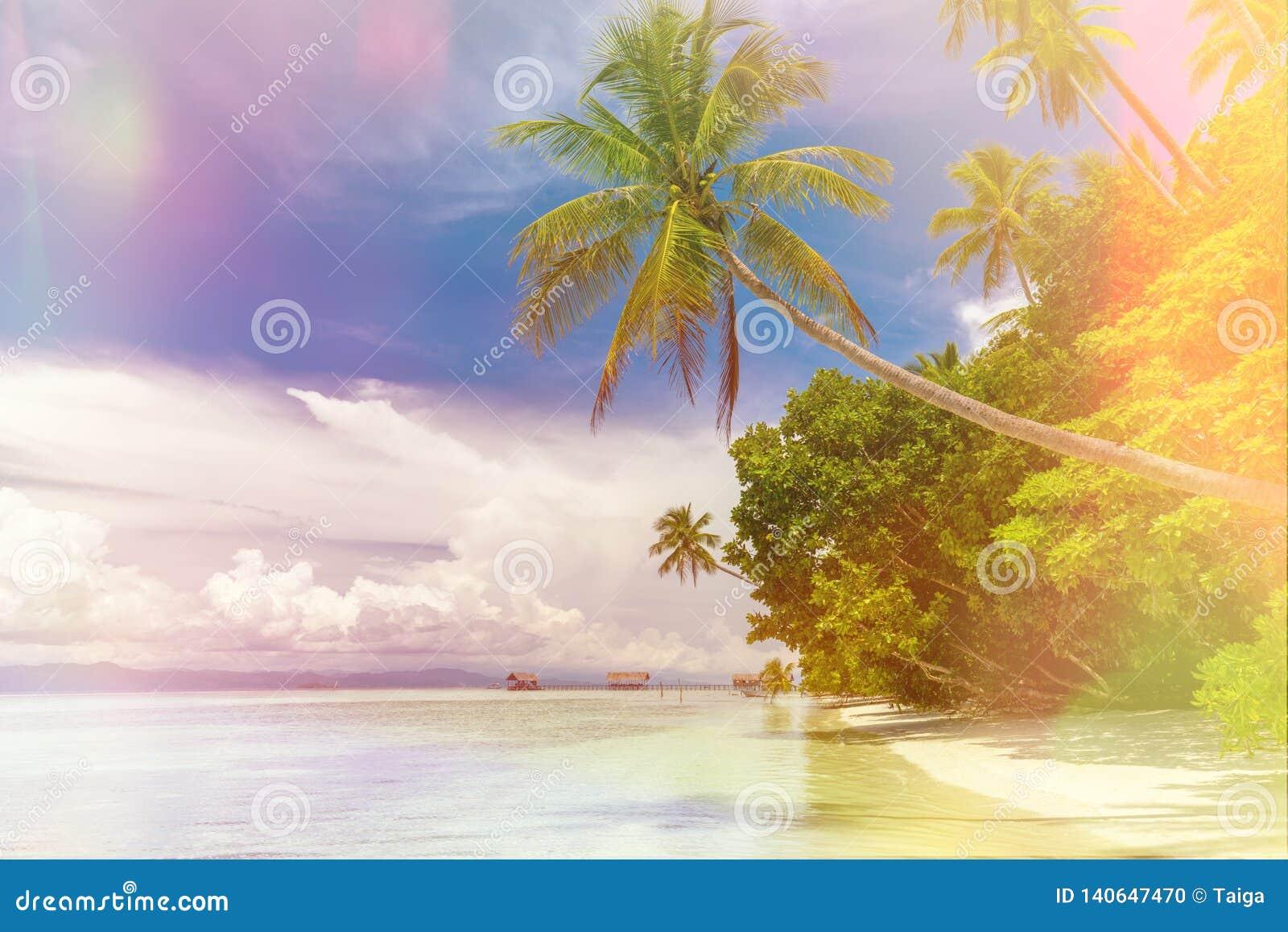 Fundo da ilha de Paradise - paisagem da praia tropical - oceano calmo, palmeiras, céu azul