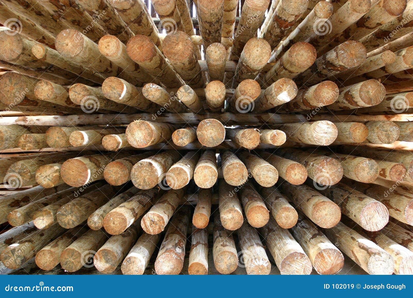 Fundo da madeira