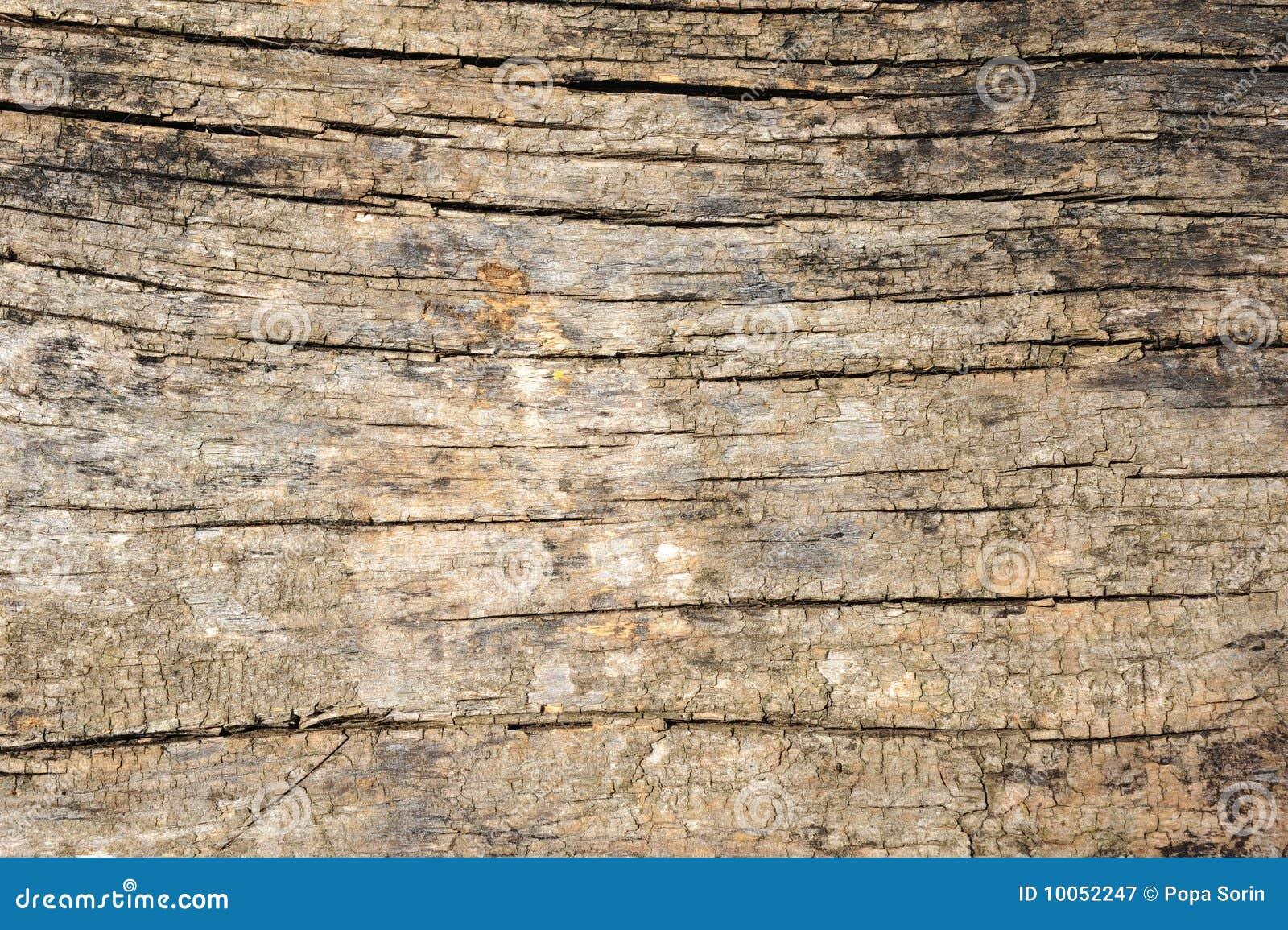 Fundo da madeira do vintage