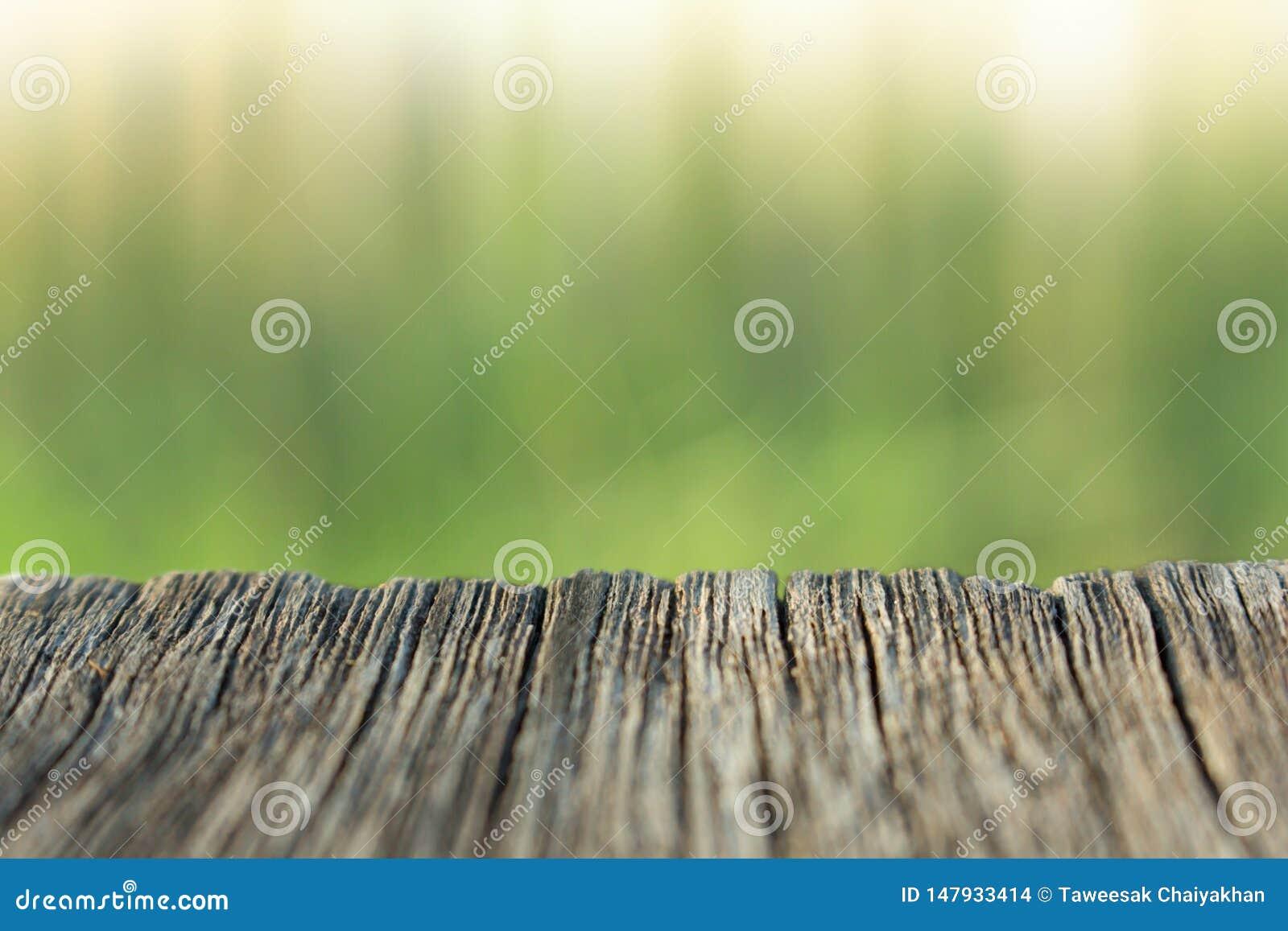 Fundo da madeira e da natureza do borr?o