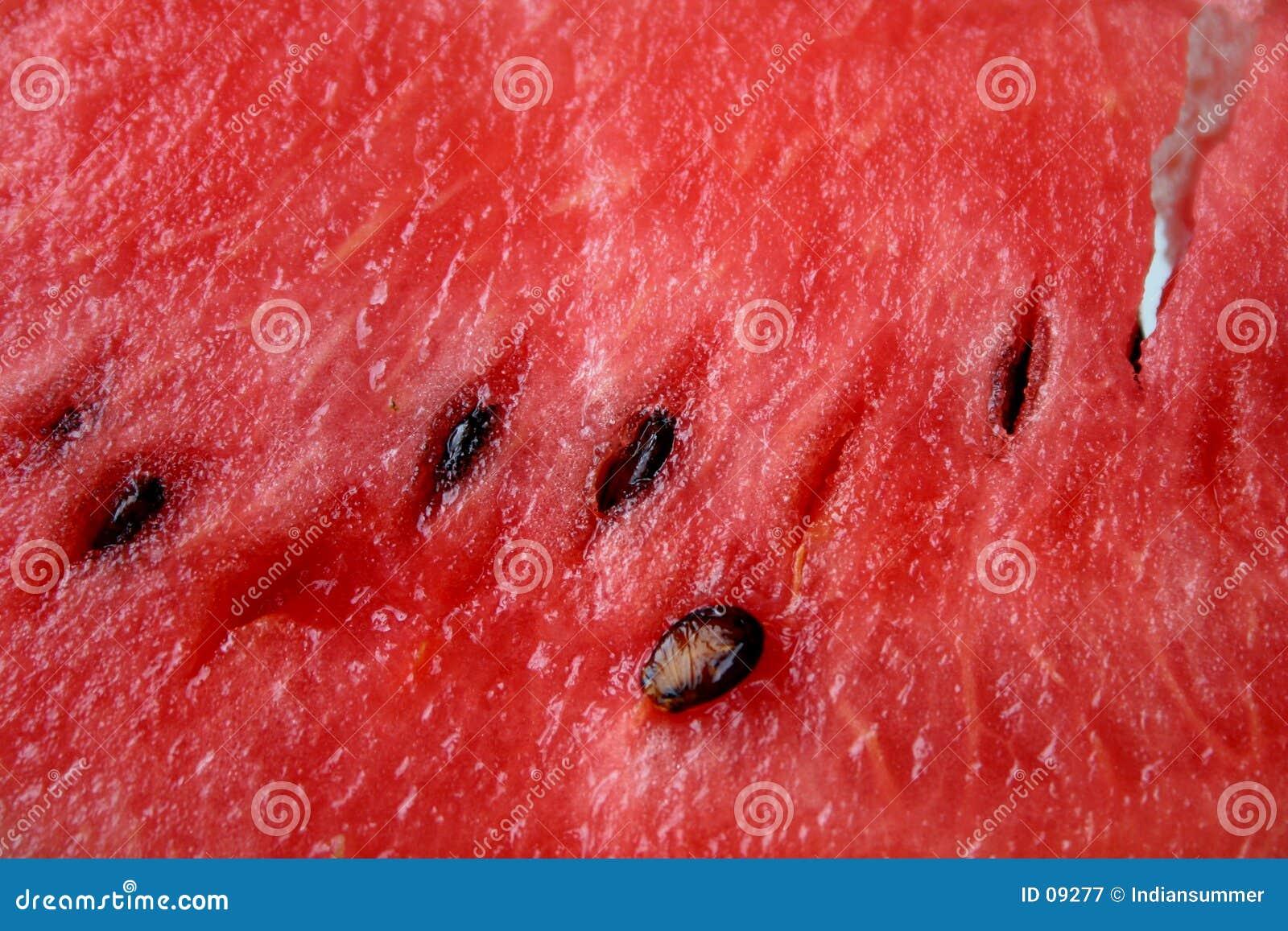 Fundo da melancia