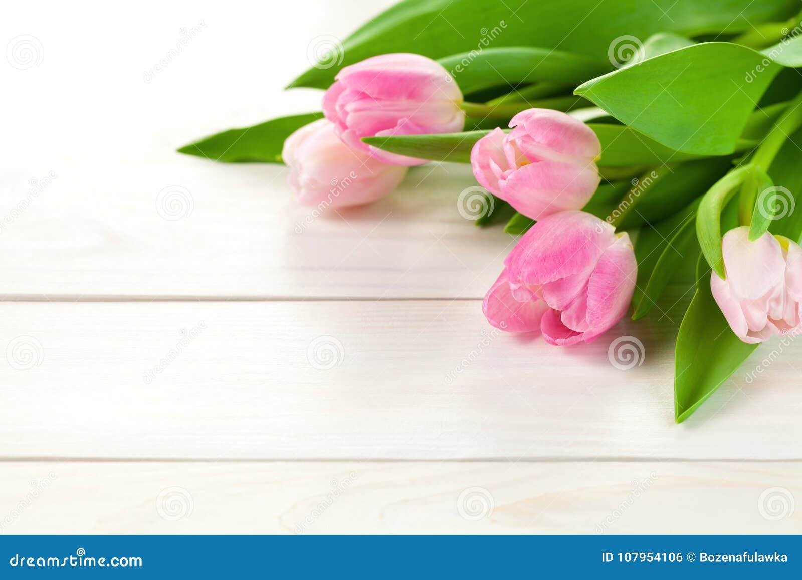 Fundo da mola com flores da tulipa