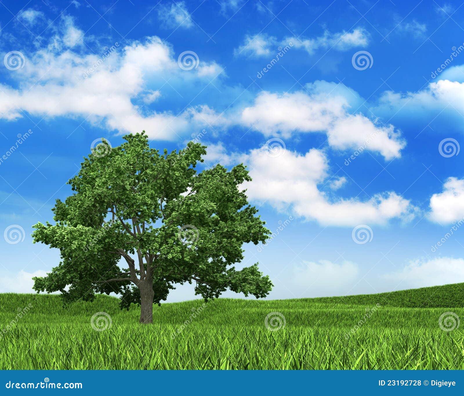 Fundo da natureza - céu, grama e árvore