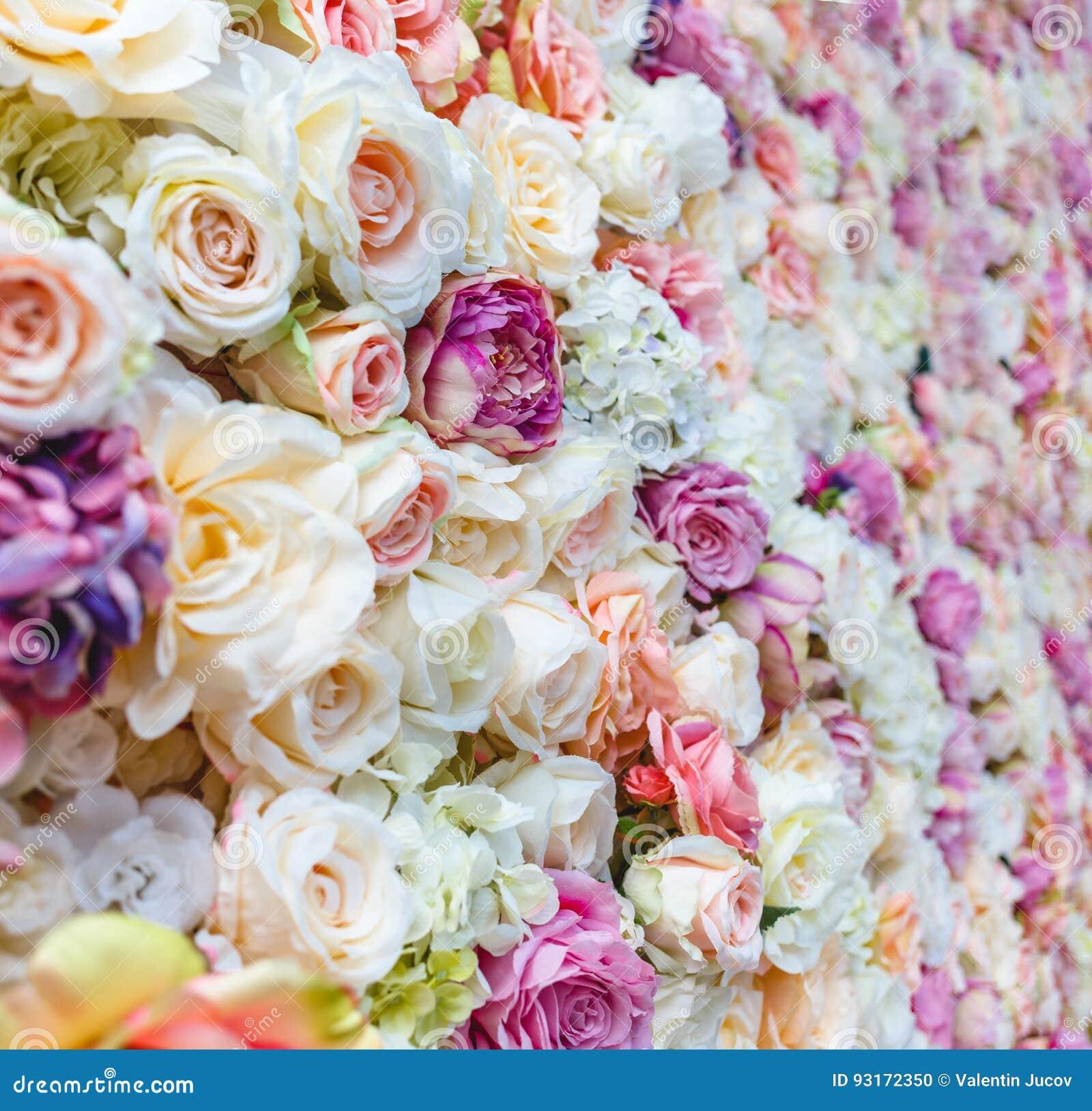 Fundo da parede das flores com surpresa de rosas vermelhas e brancas, decoração do casamento