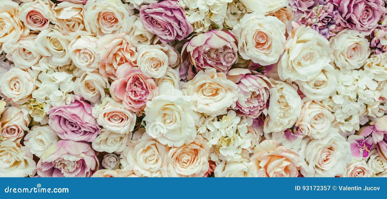 Fundo da parede das flores com surpresa de rosas vermelhas e brancas, decoração do casamento, feito à mão