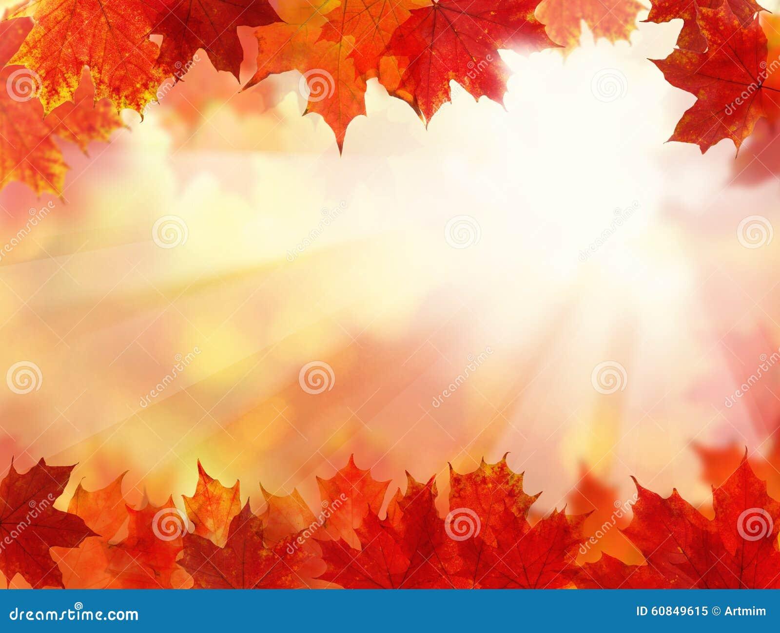 Fundo da queda com Autumn Leaves