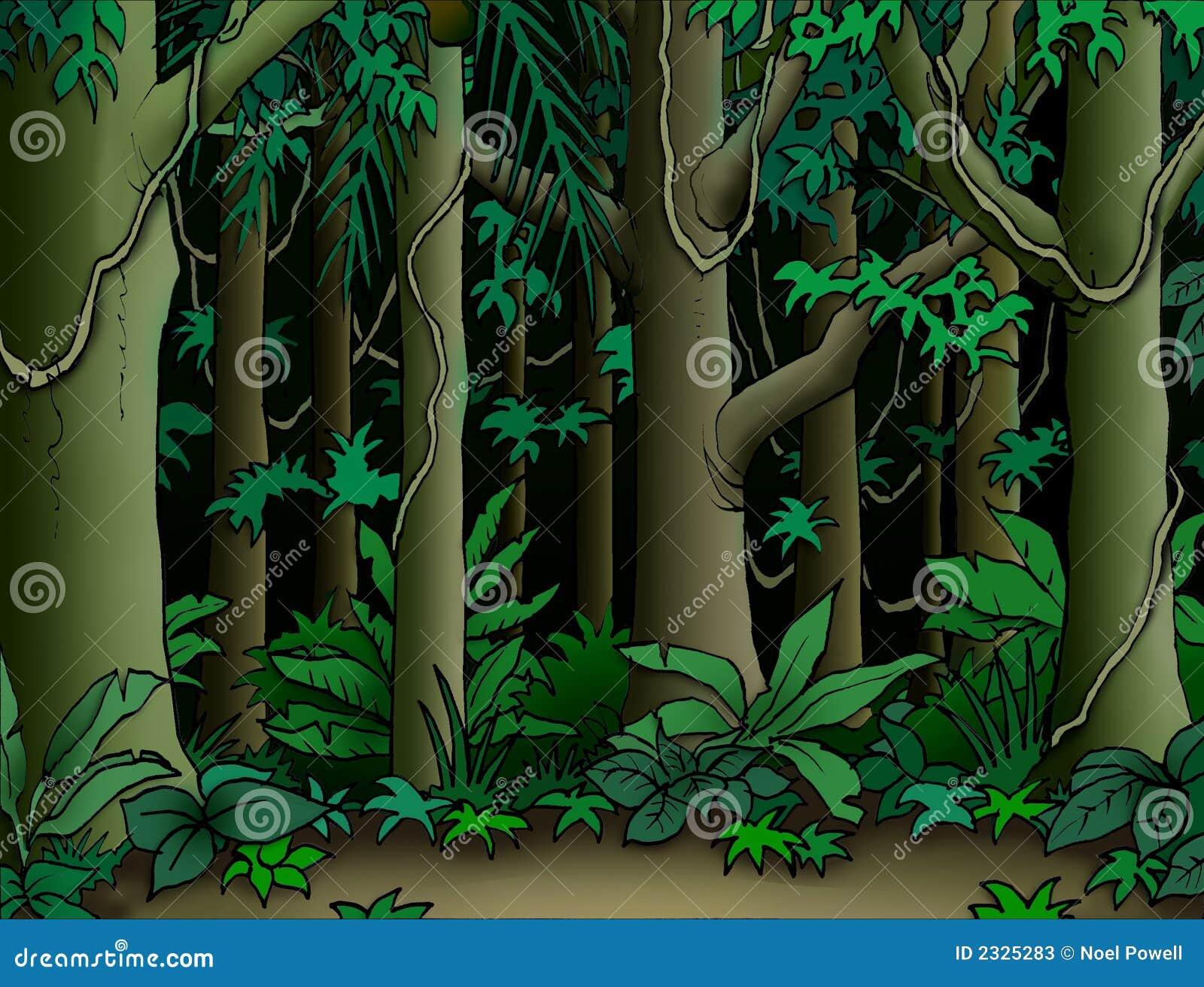 Fundo da selva