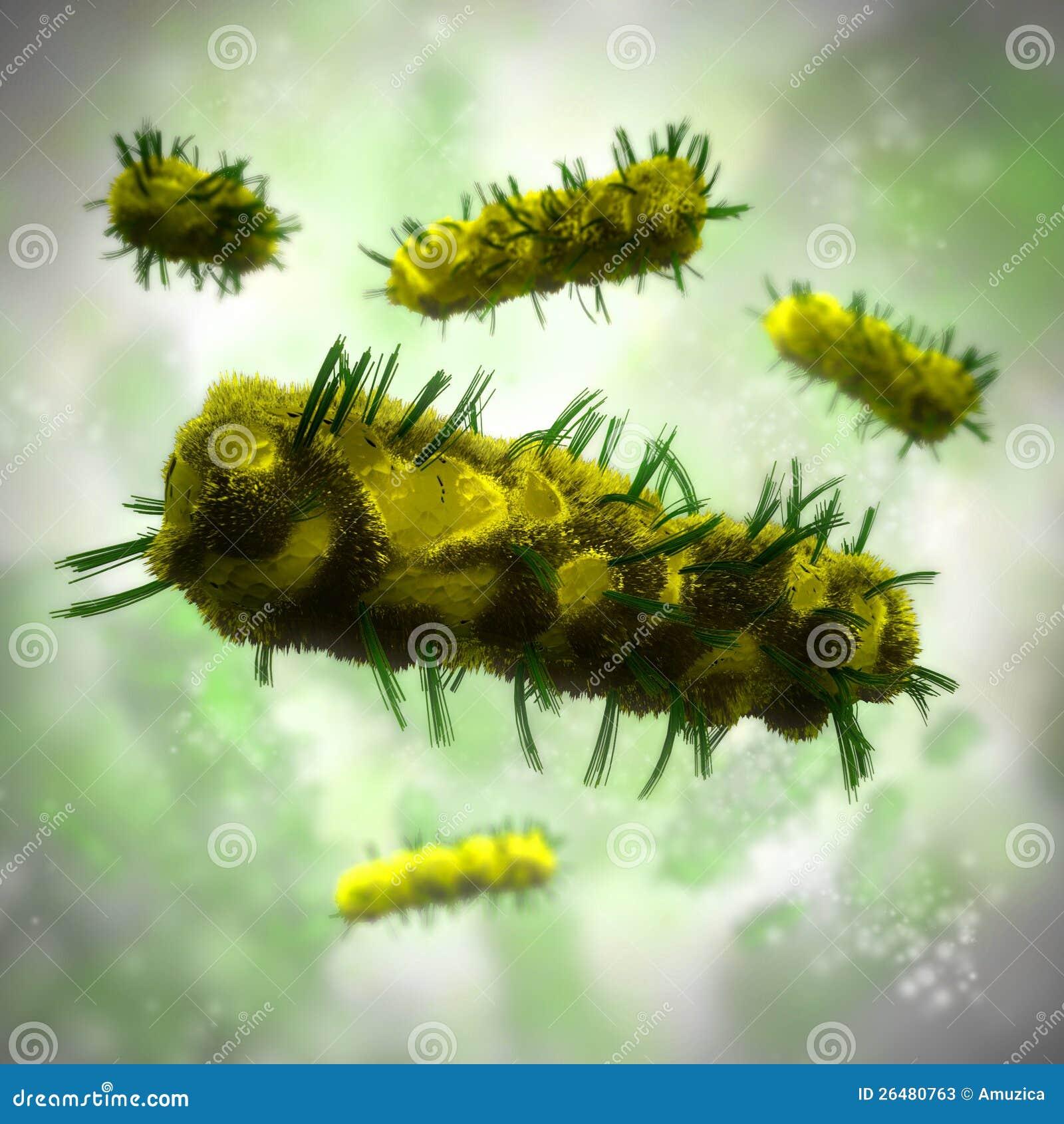 Fundo das bactérias