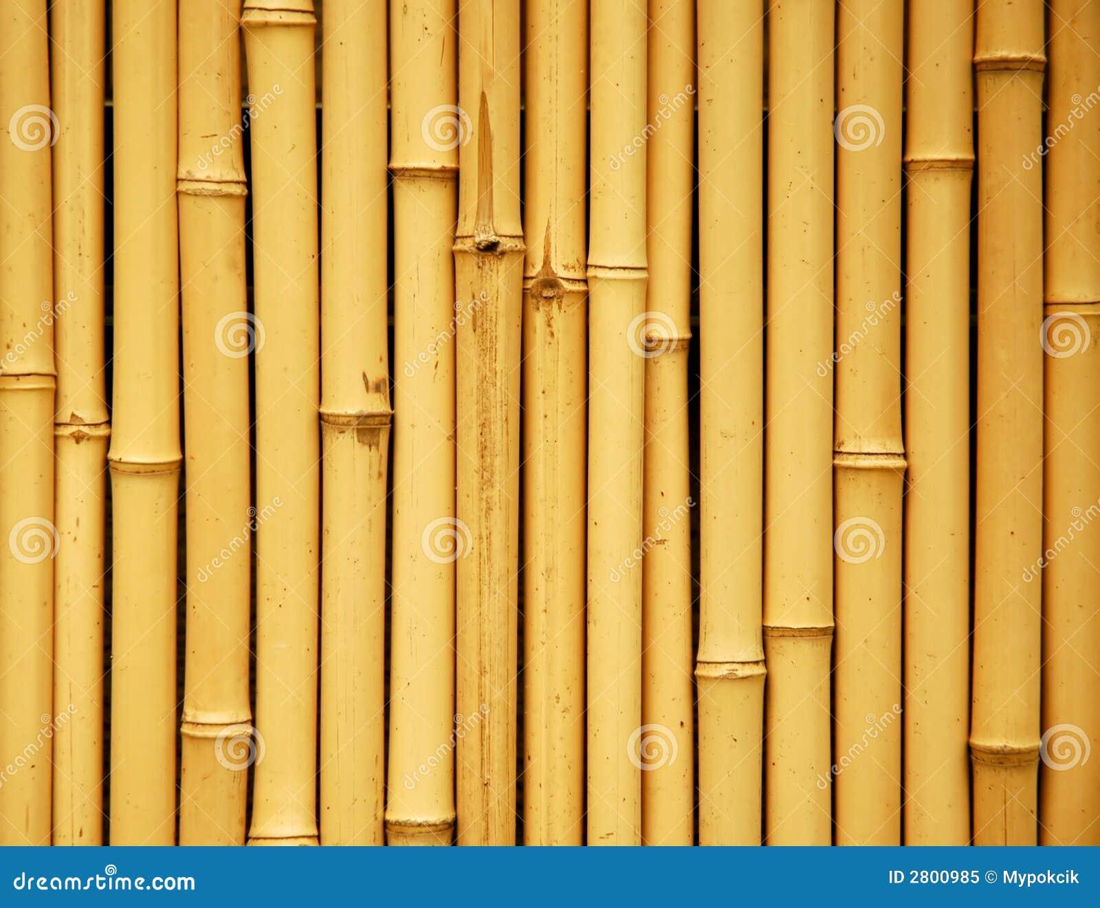 Fundo De Bambu Japon 234 S Imagem De Stock Imagem De 225 Sia