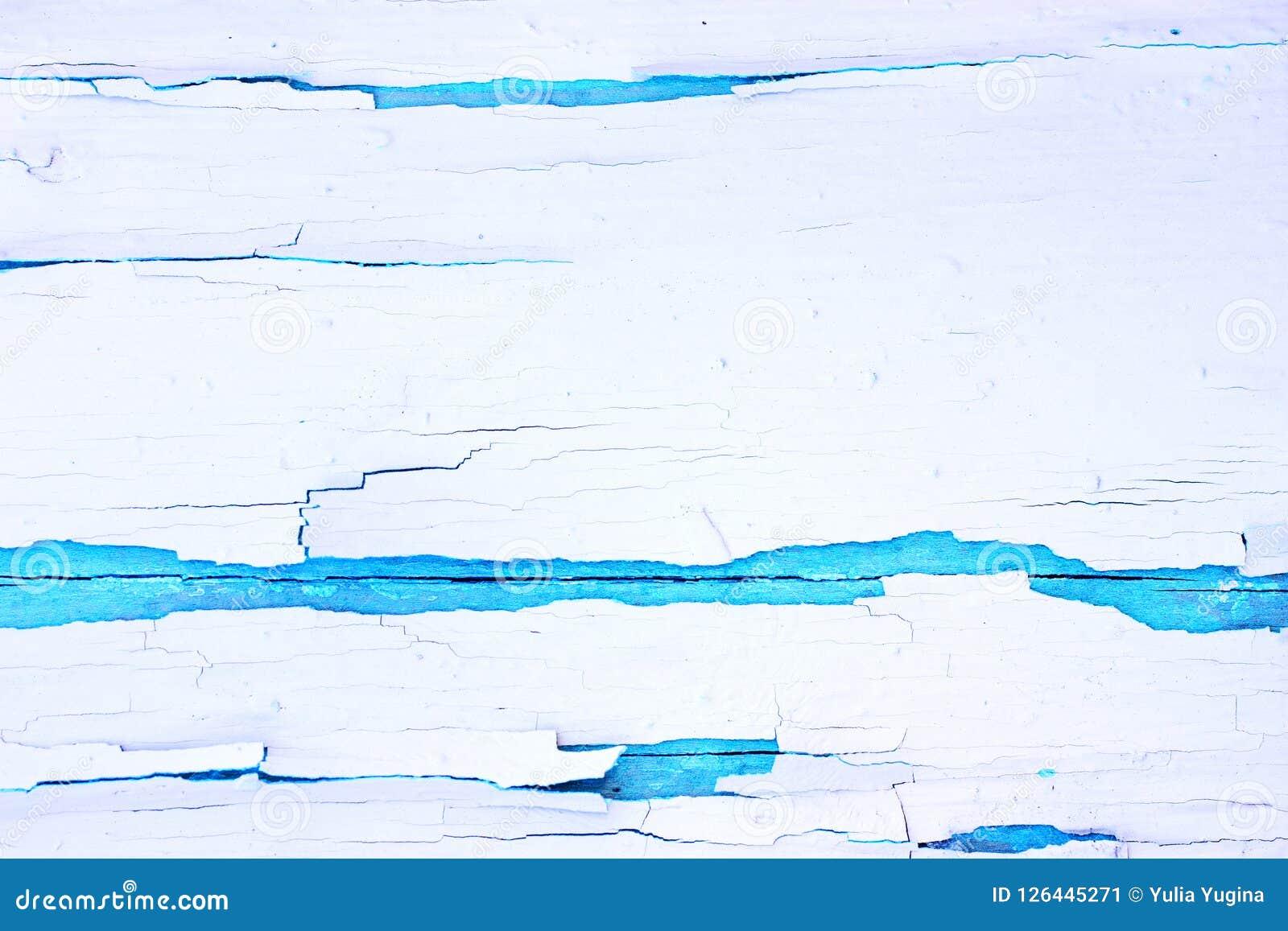 Fundo de madeira áspero pintado, parede velha com branco rachado da pintura no contexto azul