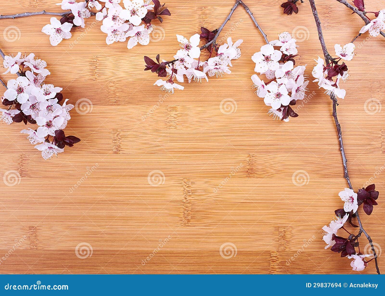 Fundo da mola com flores