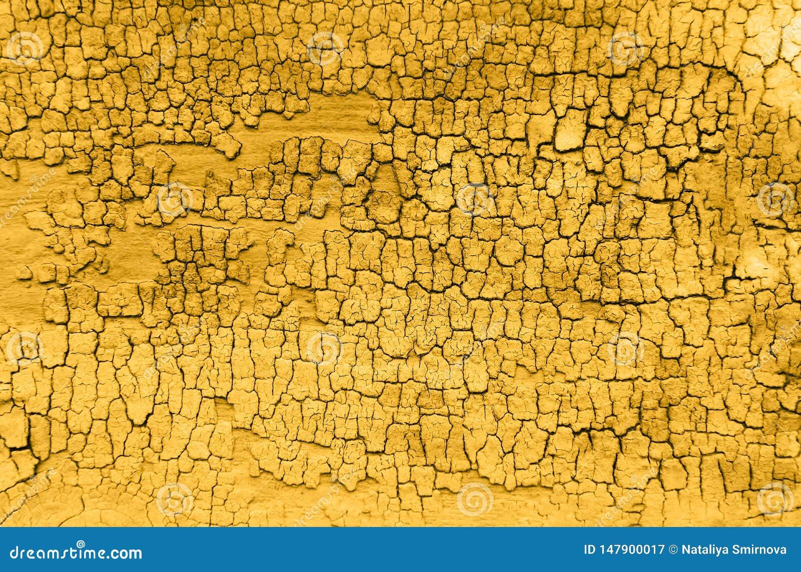 Fundo de madeira velho amarelo da textura