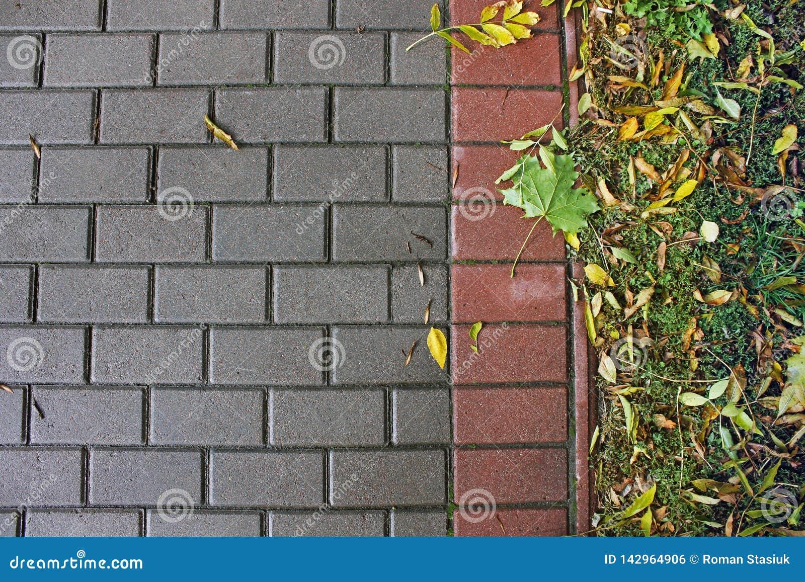 Fundo de pavimentar telhas outono