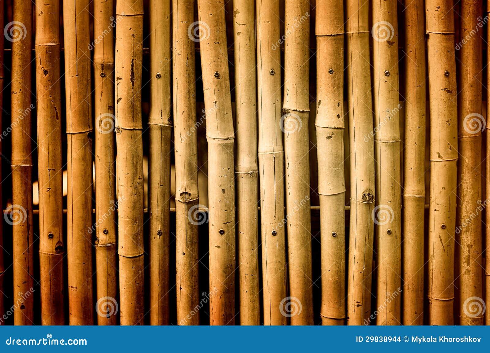 Fundo do bambu do vintage