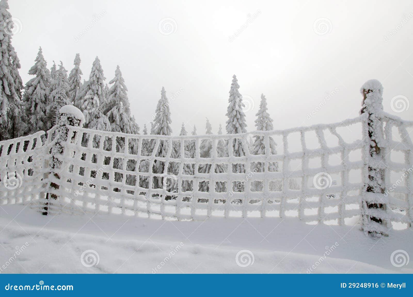 Download Fundo do inverno foto de stock. Imagem de fundo, overcast - 29248916