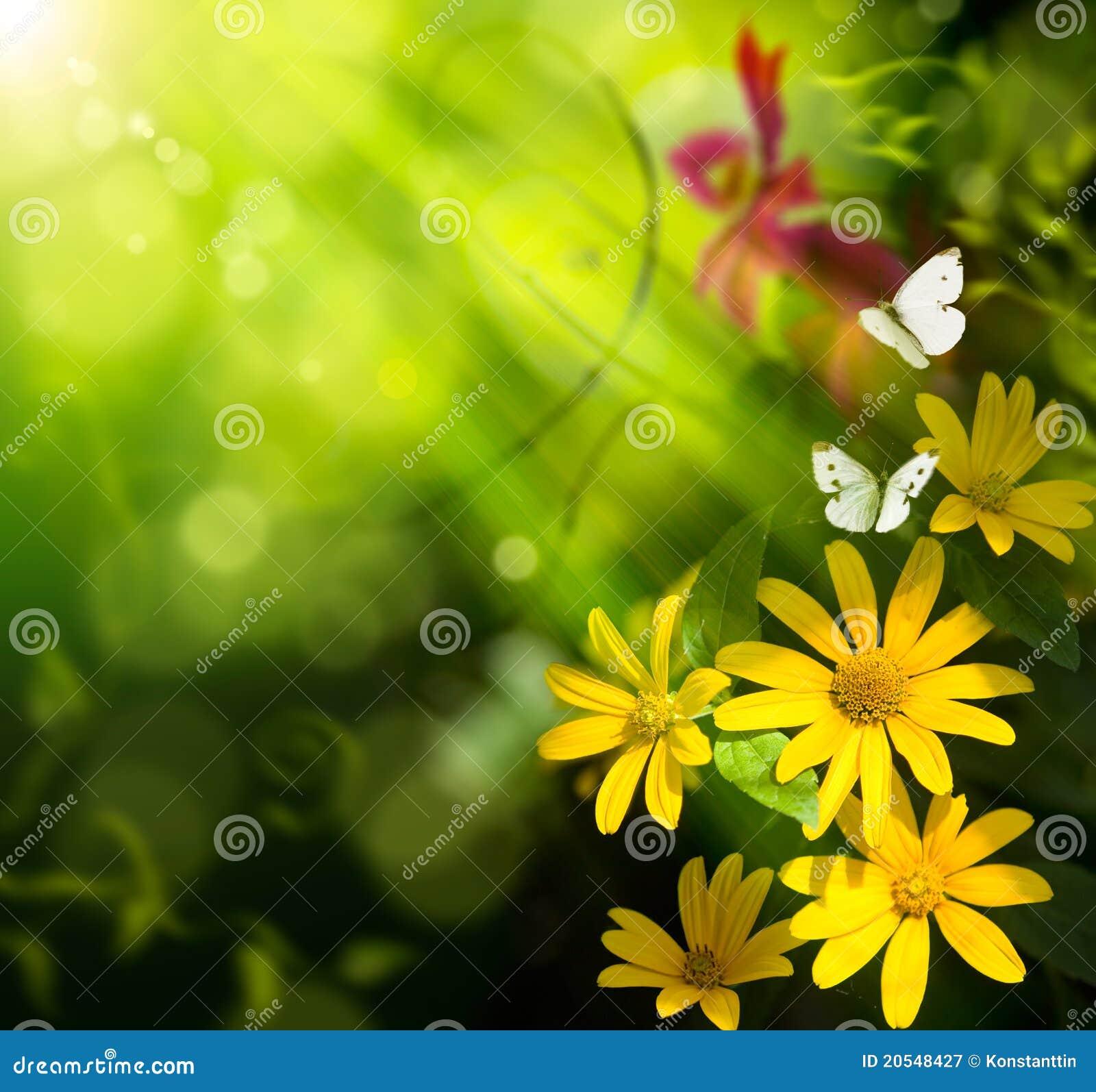Fundo do verão da arte. Flor e borboleta