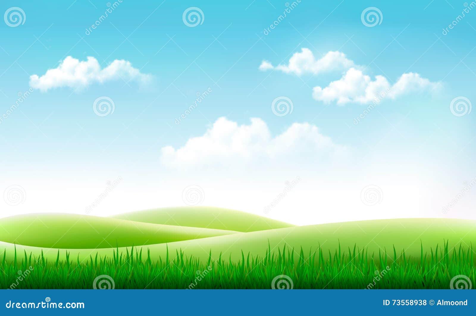 Fundo Do Verao Da Natureza Com Grama Verde E O Ceu Azul Ilustracao