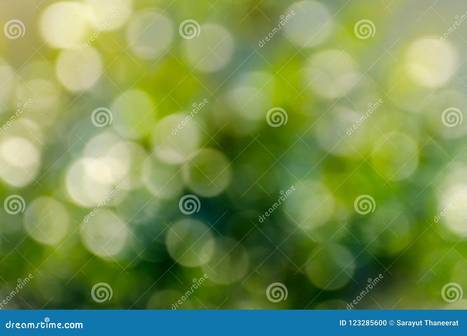 Fundo do verde do borrão de Bokeh da reflexão da água do fundo do verde do borrão de Bokeh