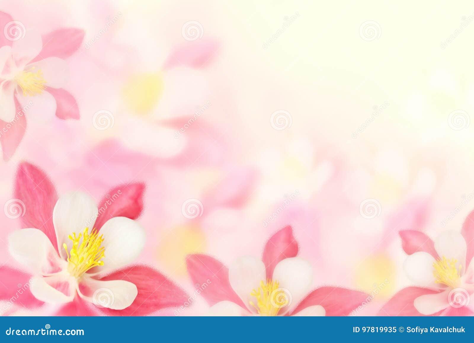 fundo flores cor de rosa